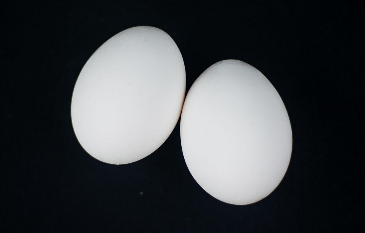 Säilytätkö munia väärinpäin? 5 faktaa kananmunasta