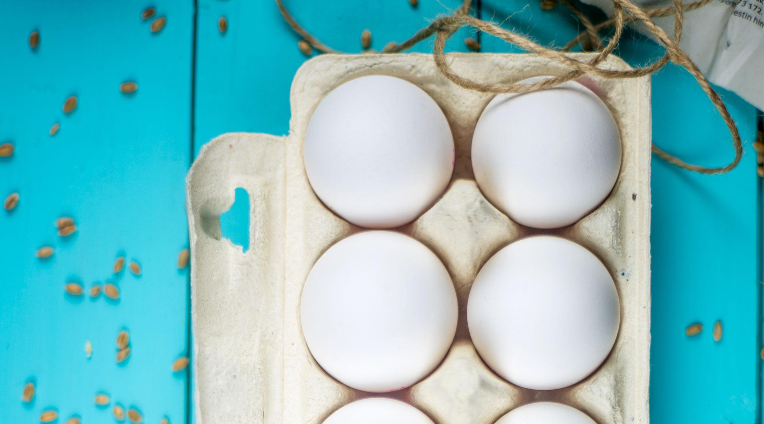 Täydellinen muna