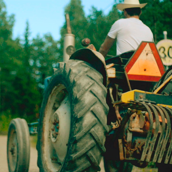 kollaasi-traktori