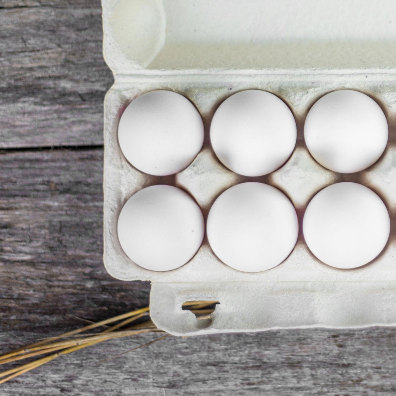 Kansainvälinen kananmunapäivä 11.10.2019