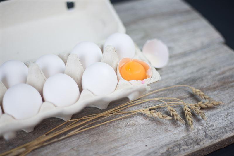 Lehdistötiedote: Munaxilta vastuullisuutta – soijavapaakananmuna ja luomukelpoinen lannoite